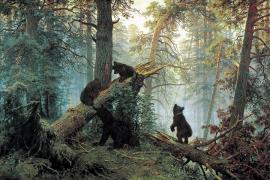 Утро в сосновом лесу. Кто нарисовал медведей?