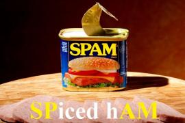Чем spam отличается от SPAMа?
