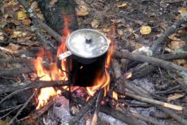 Северный чай