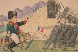 Наполеон и кролики