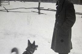 Ричи Леонида Гайдая – самая читающая собака в мире