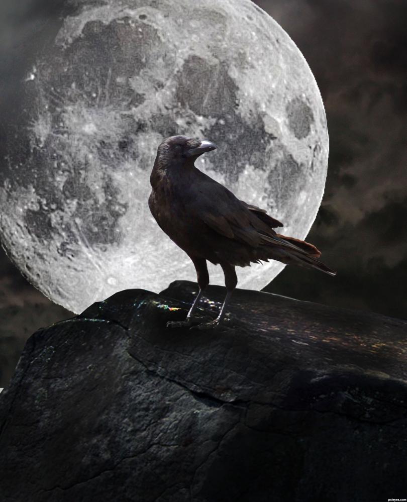 картинка ворон на фоне луны хочу поделится