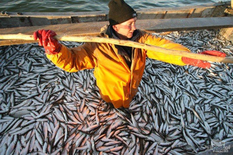 вахта рыбалка